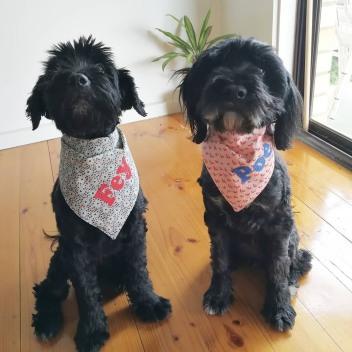 Cross stitched names on custom made dog bandannas